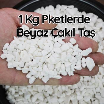 1 Kg.Beyaz Çakıl Taşı Teraryum  Terarium Fanus Çakıl Taşı Dekoratif Akvaryum Taşı1-2 cm çaplı