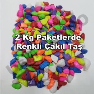 Teraryum Çakıl Taşı, Fanus Renkli Dekoratif Taş Akvaryum Taşı 2 Kg KarışıkRenk Terarium Taşı 1-2 cm çaplı
