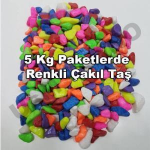 Teraryum Çakıl Taşı, Fanus Renkli Dekoratif Taş Akvaryum Taşı KarışıkRenk1-2 cm çaplı 5Kg Paketlerde